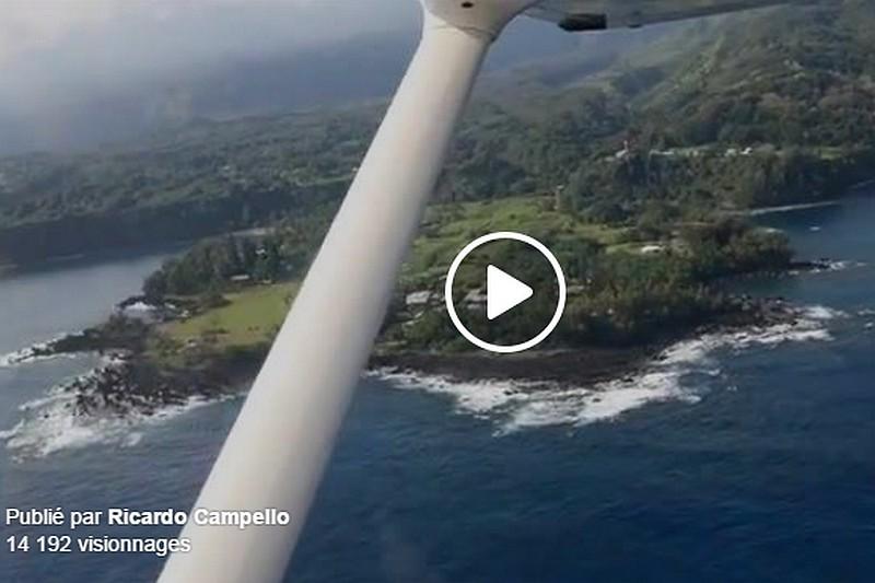 Vidéo : The Monkey Show, Hawaii 2015