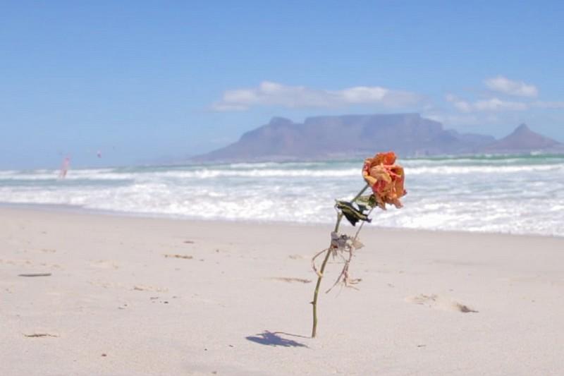 In a Cape Town